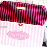 Bag of Love ~ Debut Bag